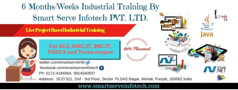 Smart Serve Infotech Is Providing A Wide And Diverse Range Of Software Development Training Sessions Under The Umbrella Of Train Development Web Design