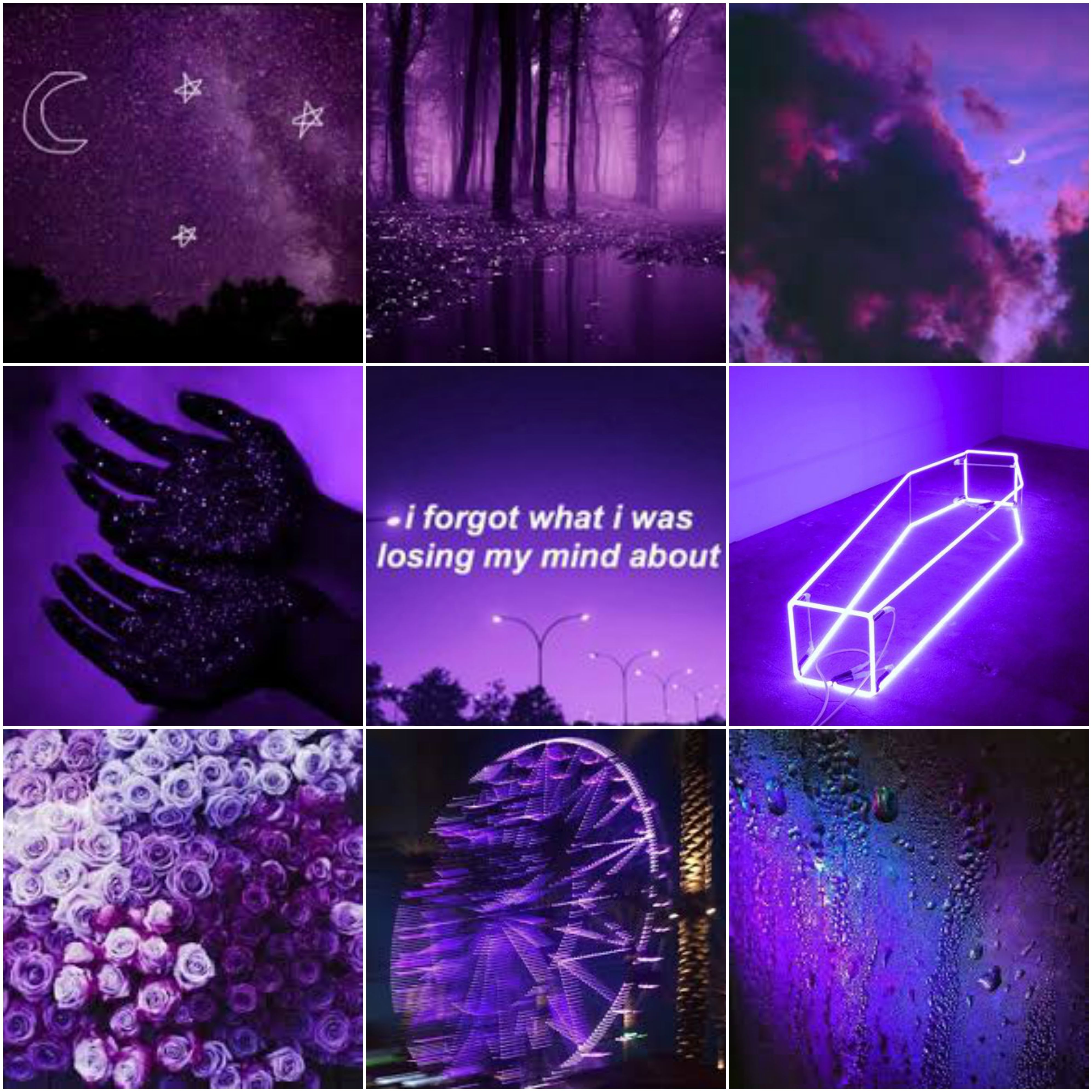 Fall Out Boy Champion Mood Board Aesthetic Colors Aesthetic