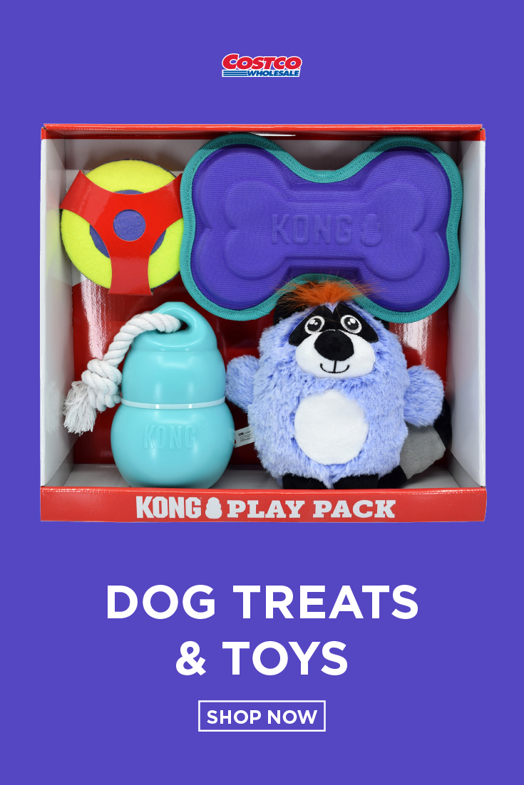 Kong Play Pack Dog Toys Dog Toys Dogs Kong