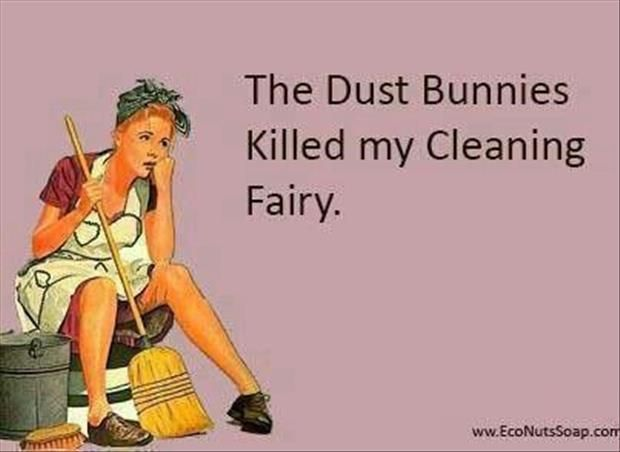 Funny Pictures Of The Day 90 Pics Cleaning Quotes Funny Clean Funny Memes Clean Humor