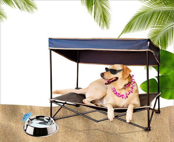 Keep Your Pet Tropi Cool With This Outdoor Pet Shade Pamper
