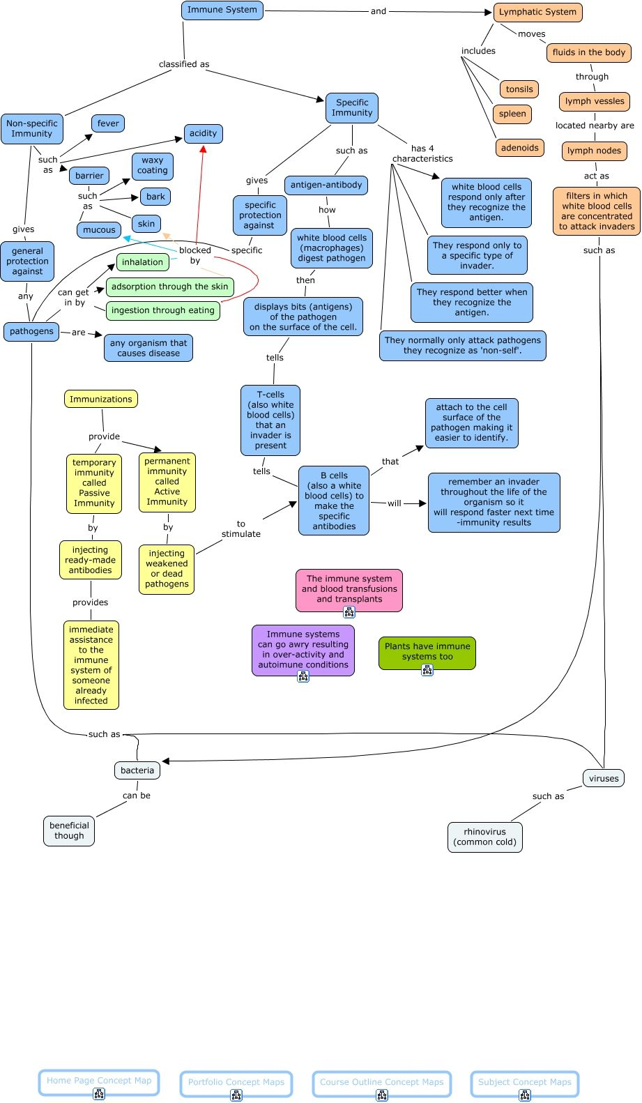 Anatomy of the immune system