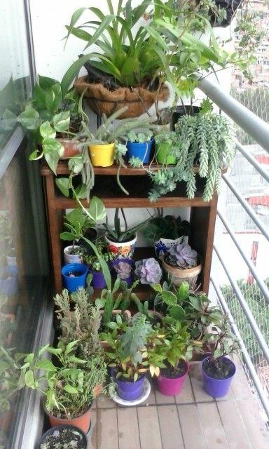 Reusé el mueble del tv, para poner el jardín en el balcón.