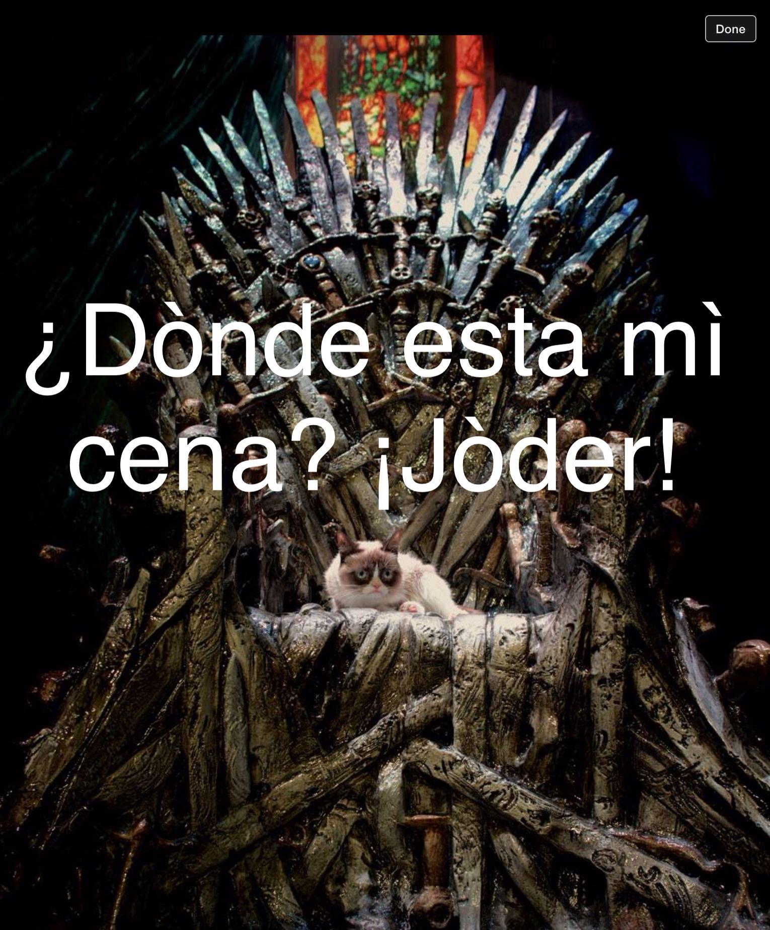 Grumpy Cat Meme In Spanish Translation Where Is My Dinner