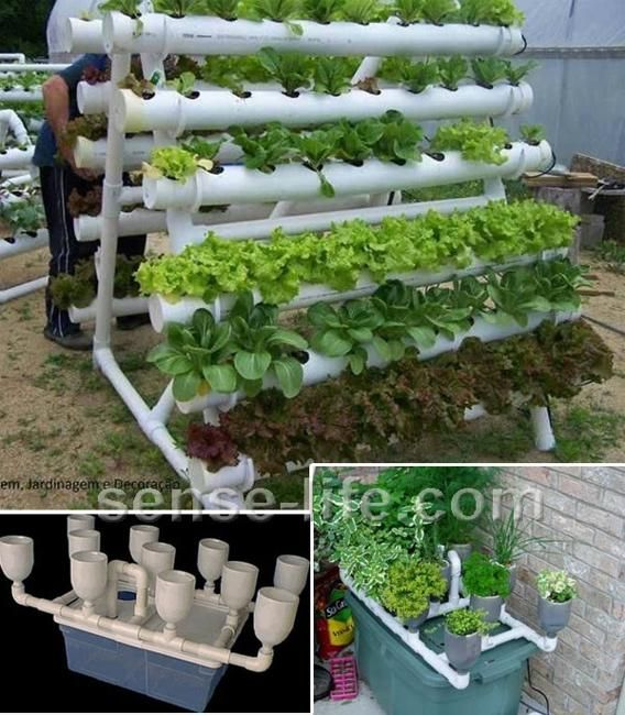 Creative Backyard Ideas, Plastic Pipe Greenhouses and Vertical Garden Designs