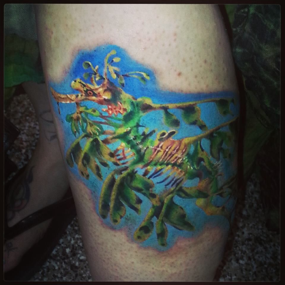 Leafy sea dragon tattoo by carolyn cadaver tattoos for Sea dragon tattoo