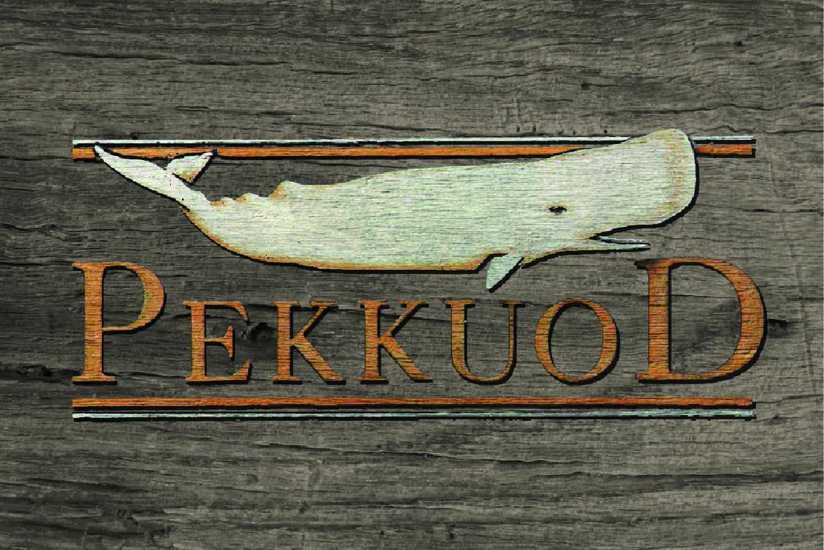www.pekkuod.it/pub/index