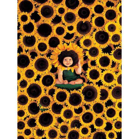 Sunflower Wall Photography Art, Multicolor
