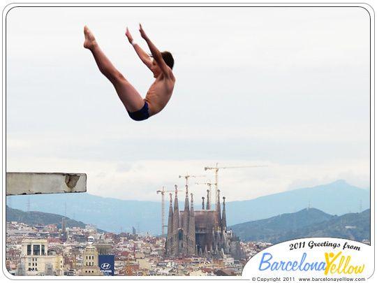 Swimming Pool High Dive | Barcelona 2015   Olympic Diving Swimming Pool  Montjuic
