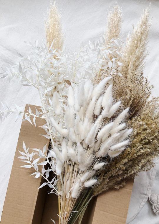 Trockenblumen I Pampas Gras und mehr – Wild Daisy Concept Store