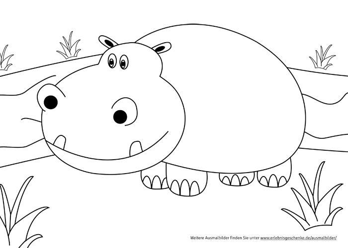 Ausmalbilder Zum Ausdrucken Nilpferd Liebe Pinterest Hipopótamo