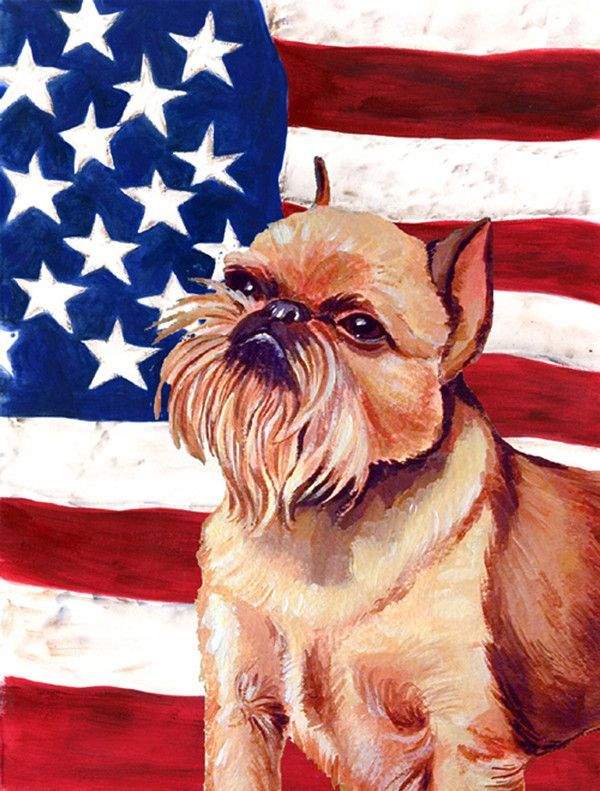 American Flag with Brussels Griffon 2-Sided Garden Flag