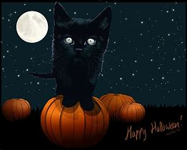 Free Windows 10 Wallpapers Halloween Themes Bing Images With Images Halloween Wallpaper Halloween Themes Halloween Cat