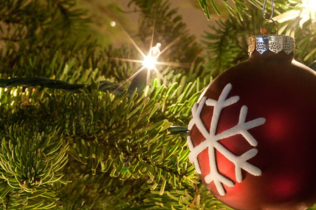How to get your Christmas tree lights to sparkle Photography