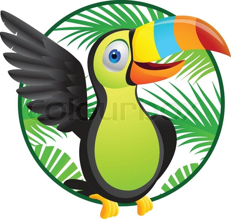 Free Cartoon Toucan Pictures Clipartix Toucan Images Toucans Cartoon Clip Art