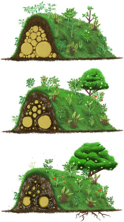 Hugelkultur Composting Whole Trees With Ease Permaculture
