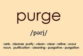 https://cliccoaching.files.wordpress.com/2014/01/purge2.png