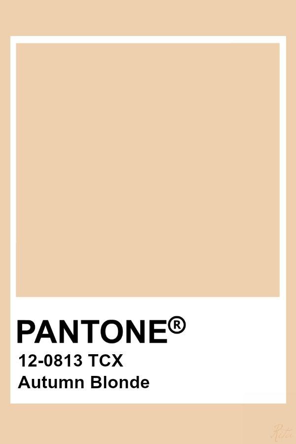 Pin By Pantone Color Files On Brown Pantone 12 0 Pantone Colour Palettes Pantone Color Beige Color Palette