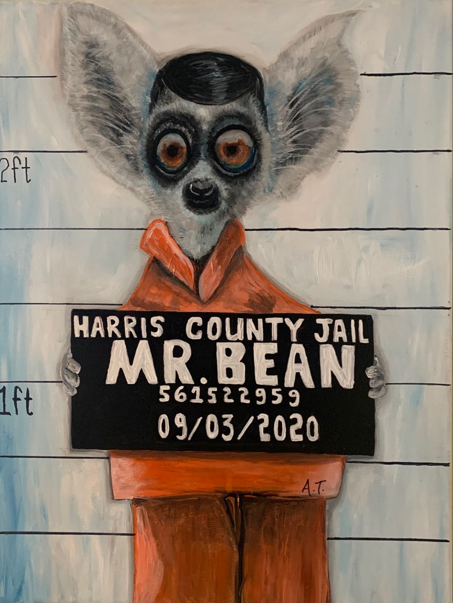 Its weird. Its funny. Its my imagination. Have a good laugh on me, I dont mind. #surrealism #surrealart #surrealist #weirdart #houston #lemur