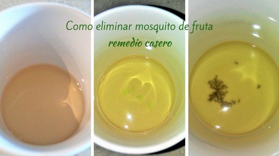 Como Eliminar Mosquito De Fruta I Food Mom Moscas De La Fruta Como Eliminar Mosquitos Remedios Para Mosquitos