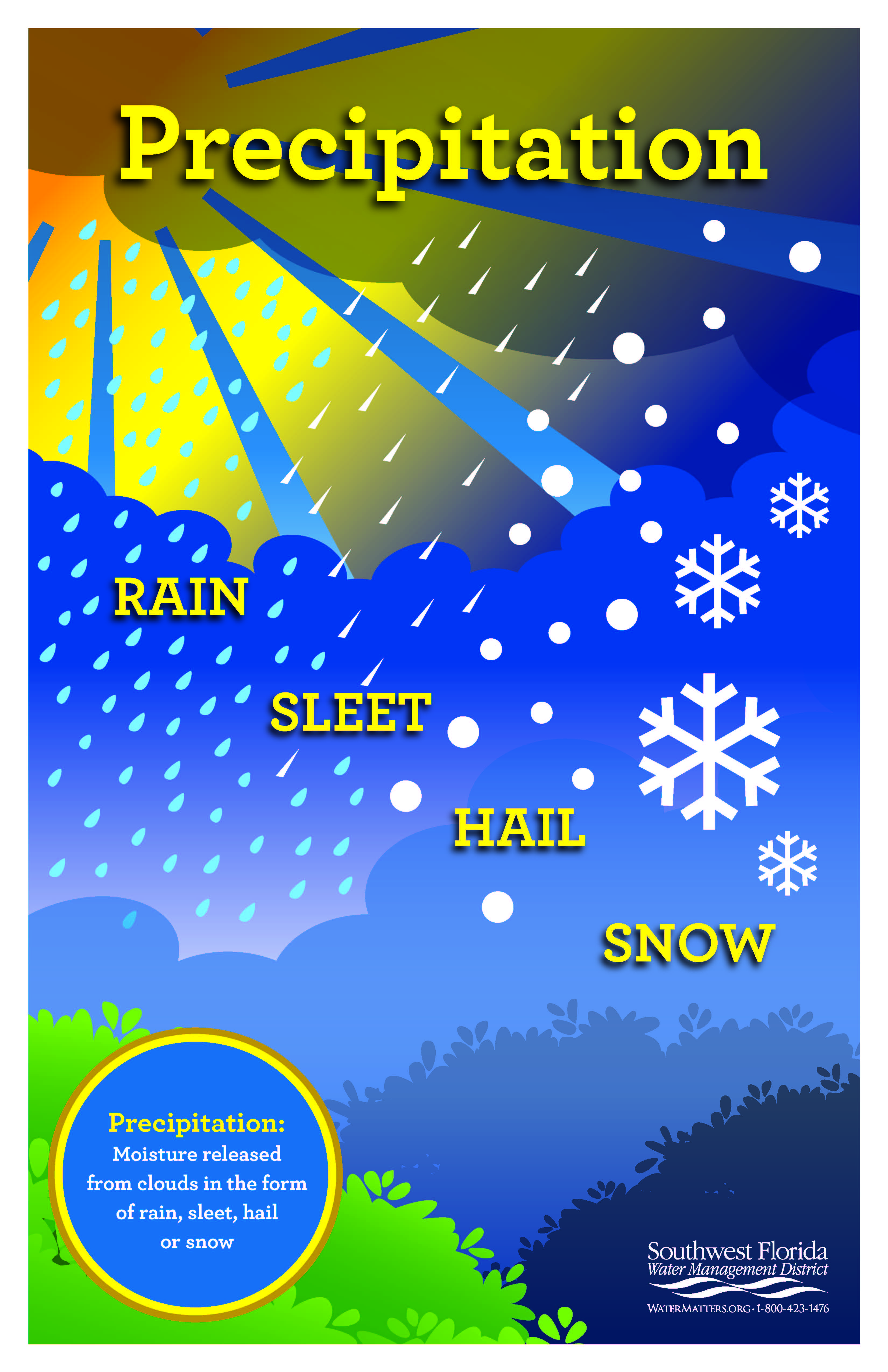 Order Or Download A Precipitation Poster