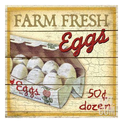 Farm Fresh Eggs Giclee Print by Kate Ward Thacker at Art.com