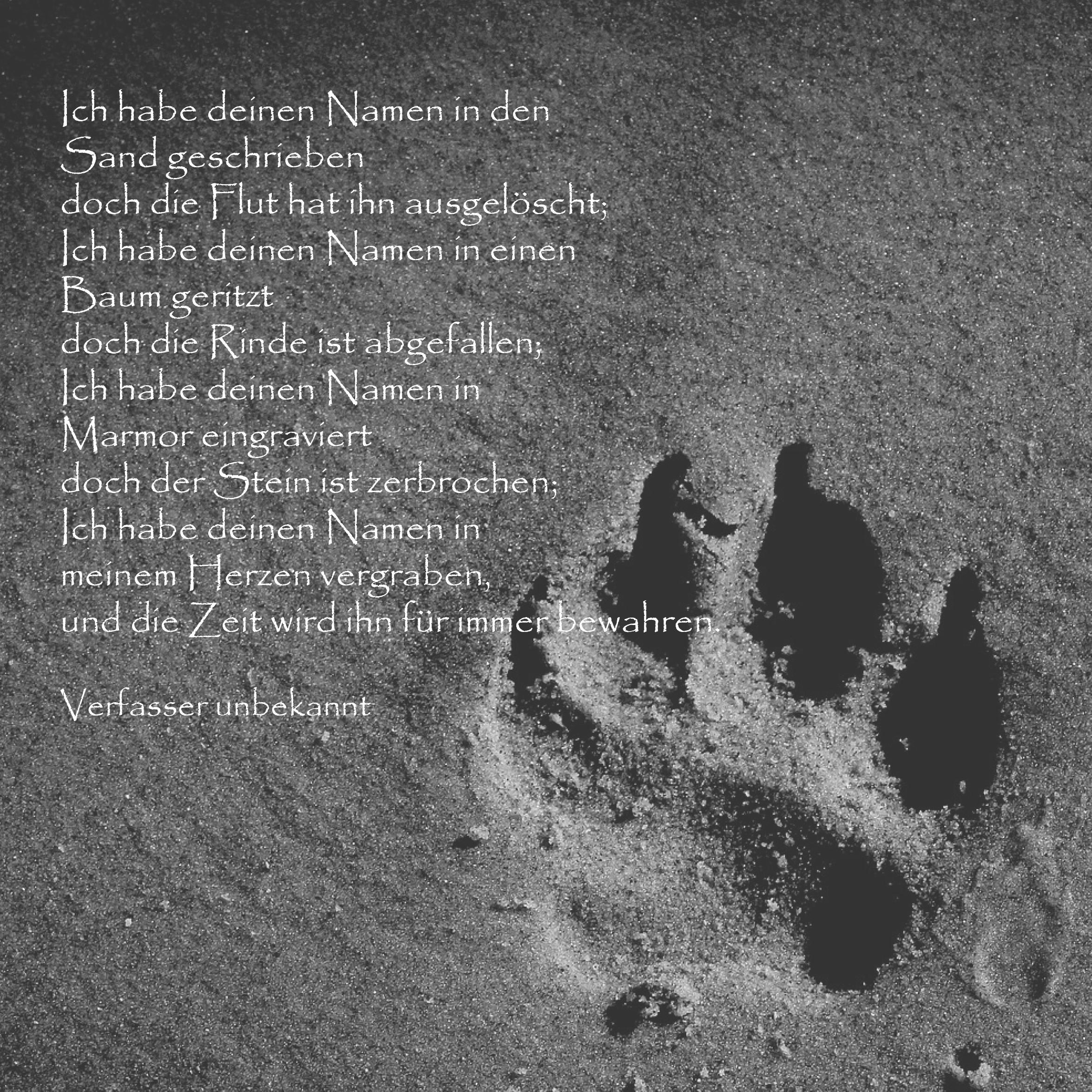 Ich Habe Deinen Namen Trauergedicht Anubis Tierbestattung Spruche Tierliebe Trauerspruch Hund Spruche Tiere
