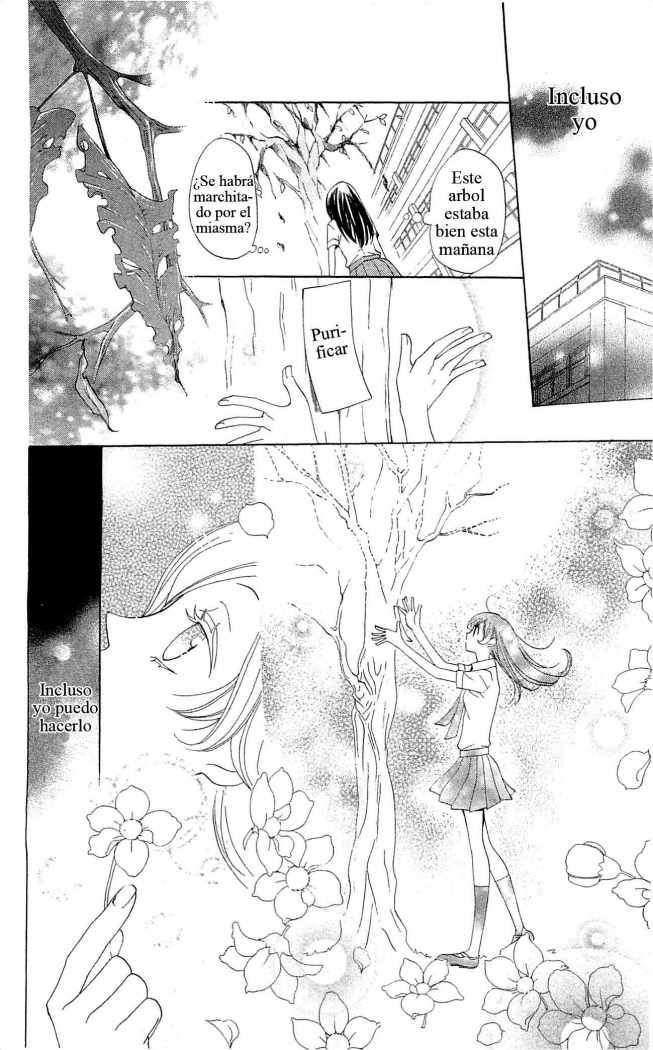 Kamisama Hajimemashita Capítulo 33 página 20, Kamisama Hajimemashita Manga Español, lectura Kamisama Hajimemashita Capítulo 149 online