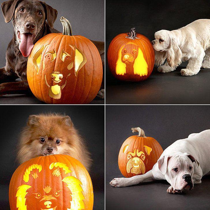 22 Downloadable Dog Breed Pumpkin Stencils Dog Pumpkin
