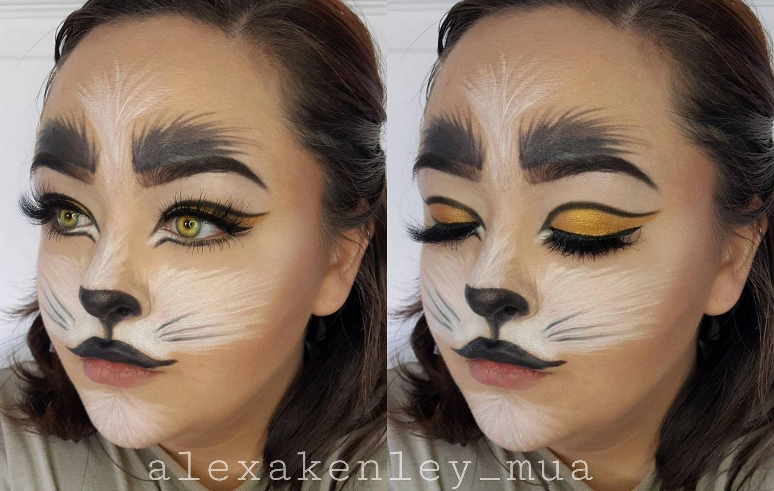Halloween Cat Face Paint Makeup Face Painting Halloween Kitty Face Paint Cat Halloween Makeup