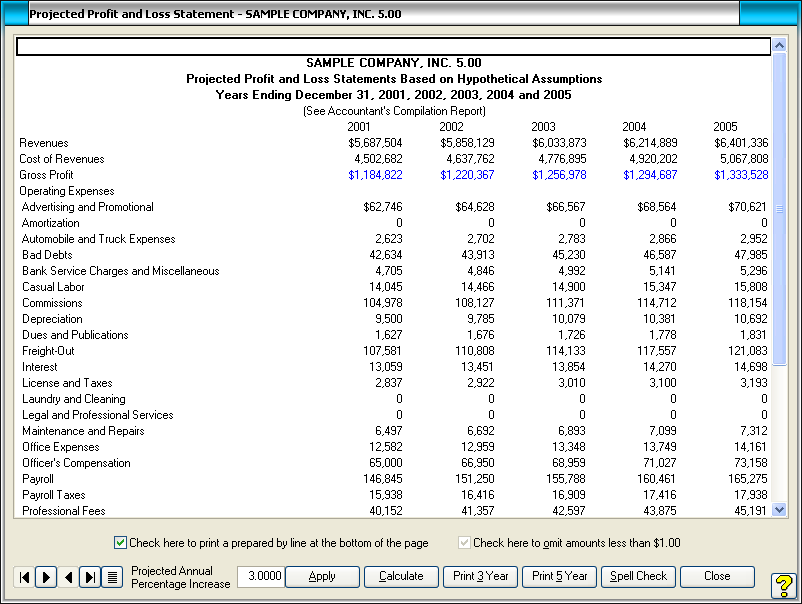 Profit And Loss Statement  Projected Profit And Loss Statement