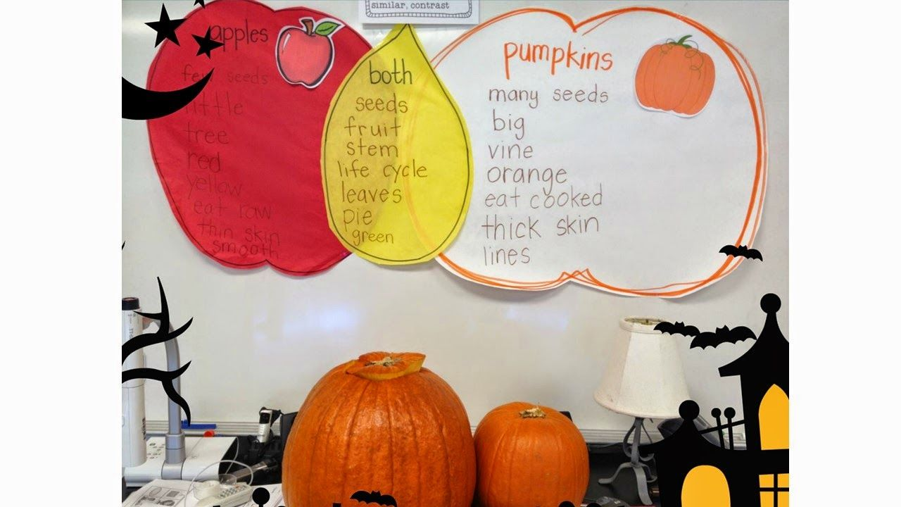 Apples And Pumpkins Compare And Contrast