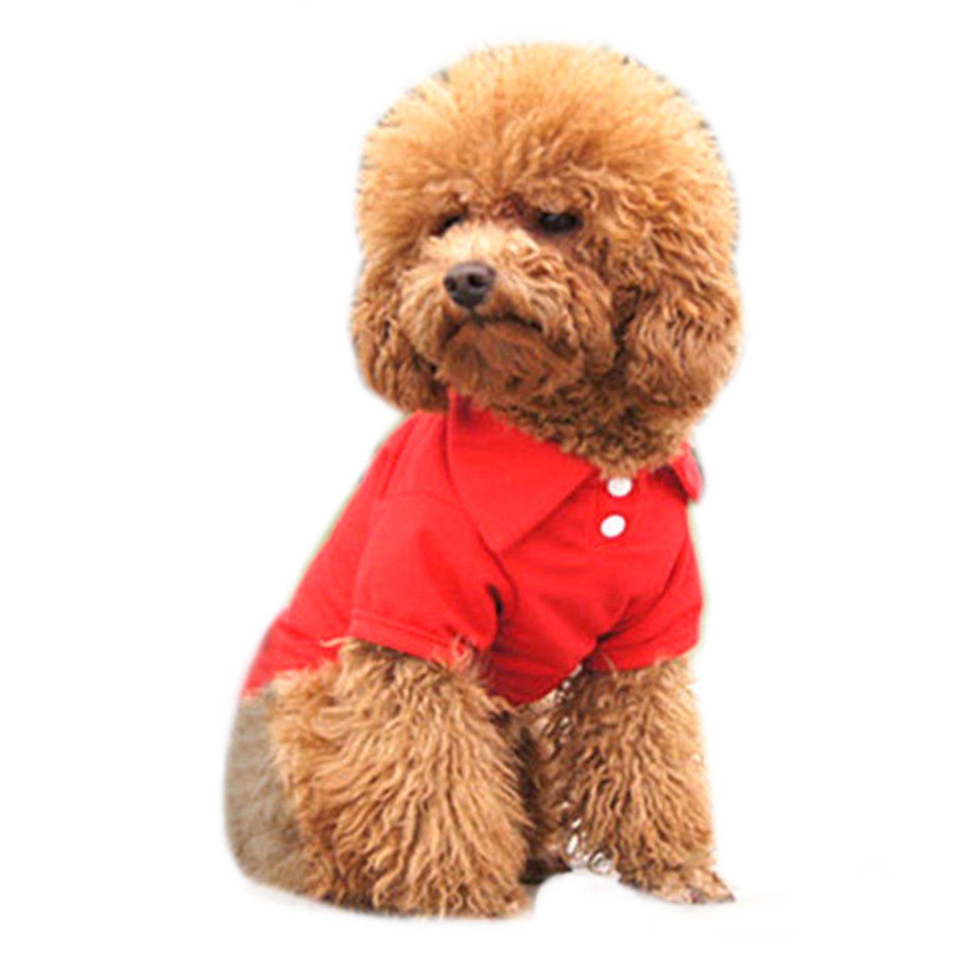 Alfie Pet by Petoga Couture - Hollis Solid Color Polo Shirt *** Click image for more details.