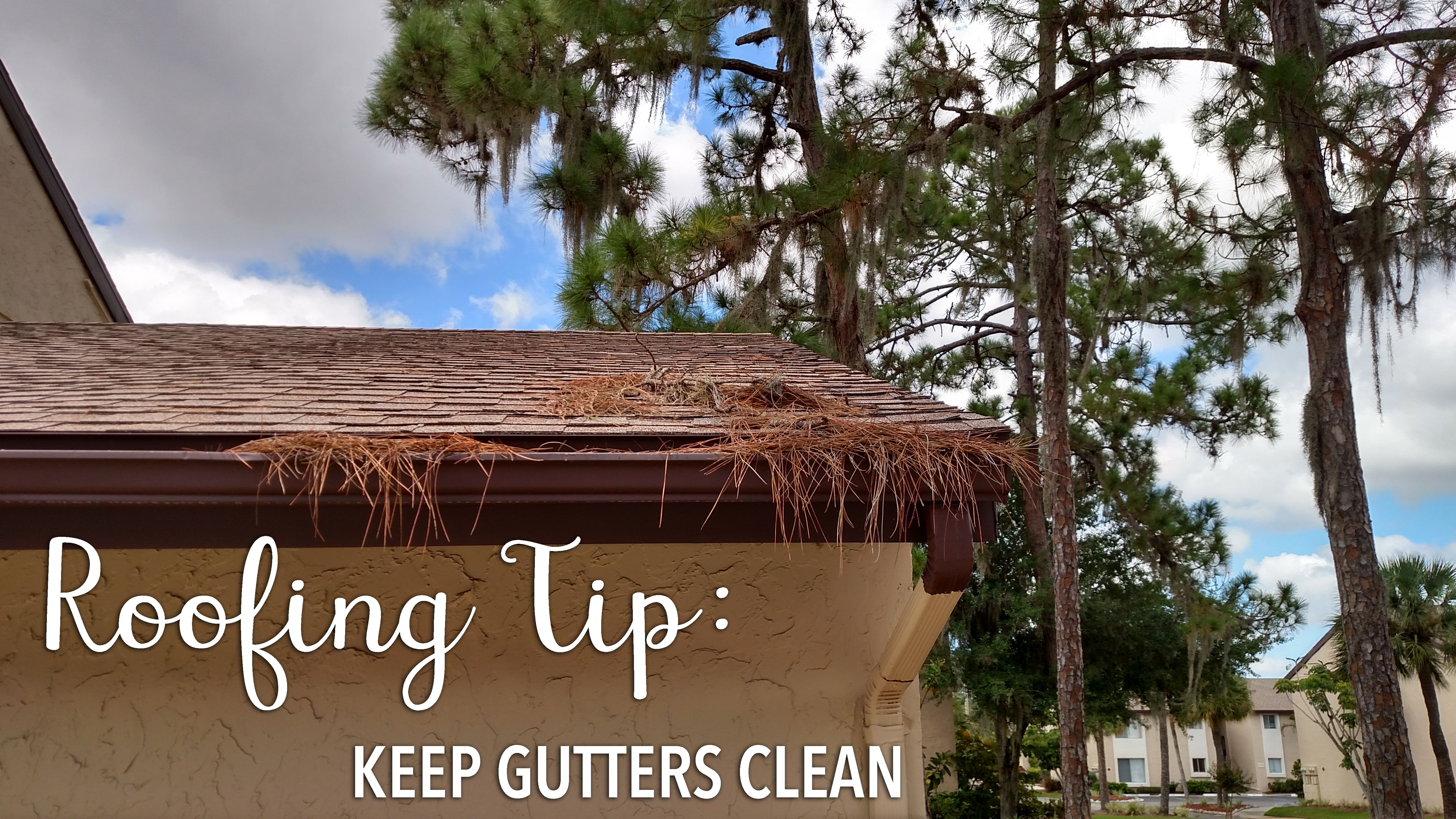 Roofing tip tuesday clean your gutters one of the most common