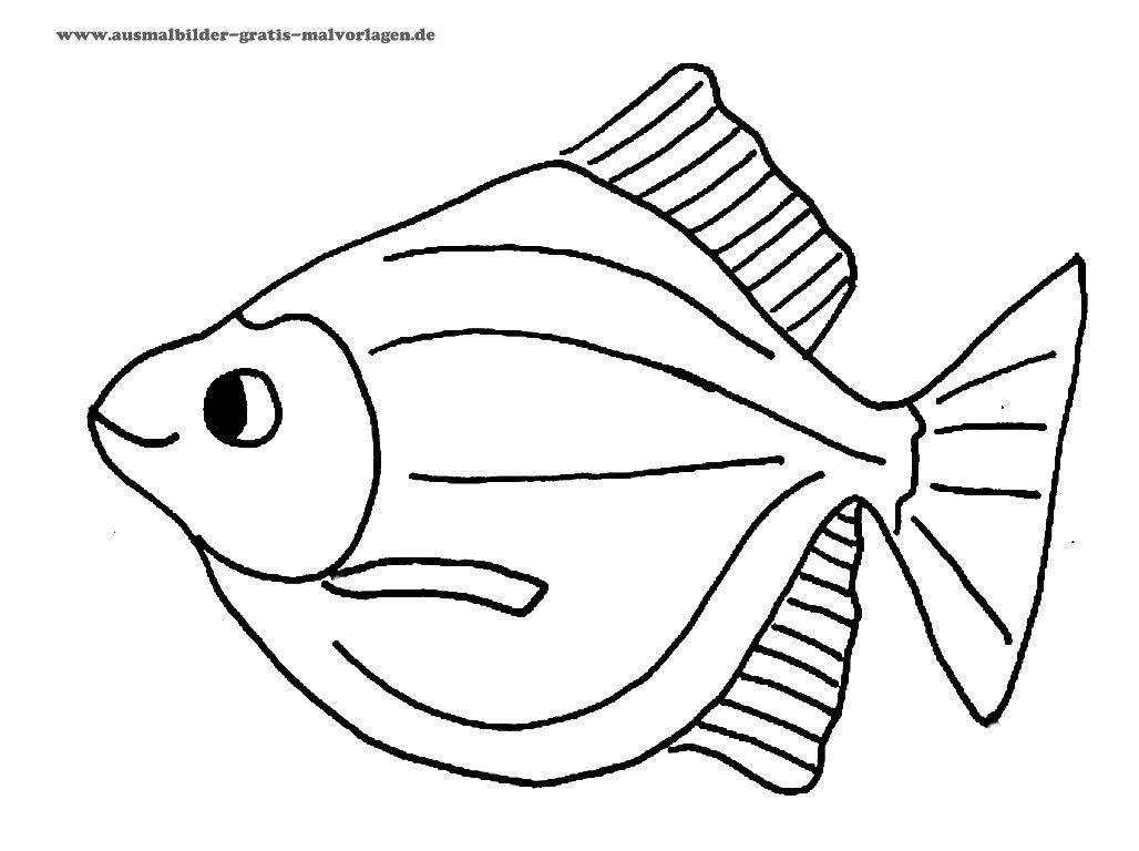 Ausmalbilder fische Ausmalbilder Malvorlage fisch