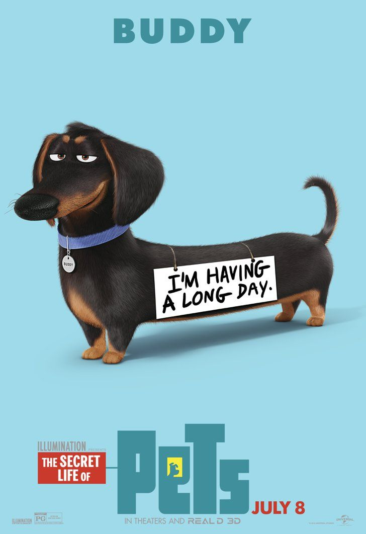 The Secret Life Of Pets Character Posters Are Here And They Re Cuter Than The Trailer Pets Movie Secret Life Of Pets Dachshund
