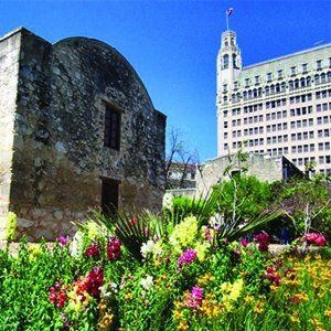 Emily Morgan Hotel Room Reservations Dog Friendly Hotel In San Antonio Tx Near The Alamo Dog Friendly Travel