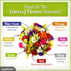 Victorian flower color meanings google search the for Meaning of flower colors