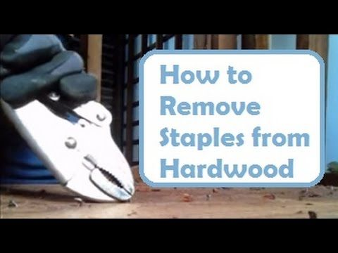 14 Repairing Old Floors How To Remove Nails And Staples From Hardwood Floor Without Damaging Wood Youtube Hardwood Floor Repair Hardwood Floors Hardwood