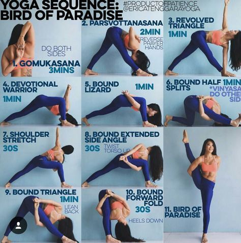 bird of paradise  yoga sequences