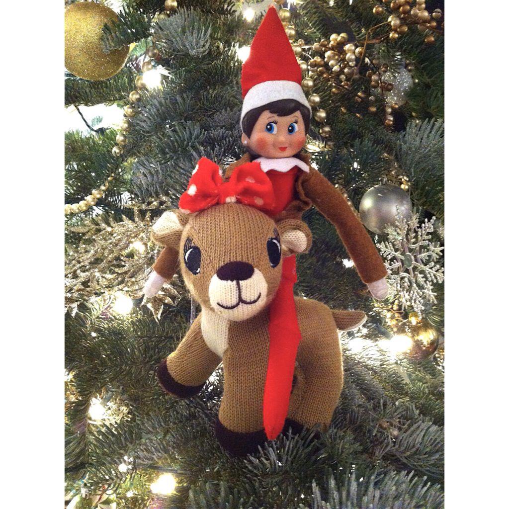 elf rides a reindeer   Elf on the shelf, Elf, Christmas elf