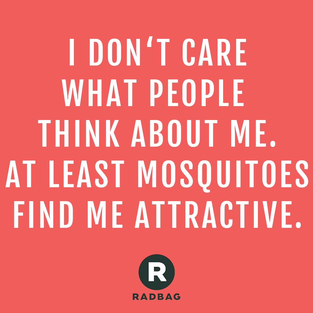 Happy Summertime Summertime Summer Quote Quotes Summerquote Summerfun Mosquitoes Insects Somm Vacation Quotes Funny Holiday Quotes Funny Funny Quotes