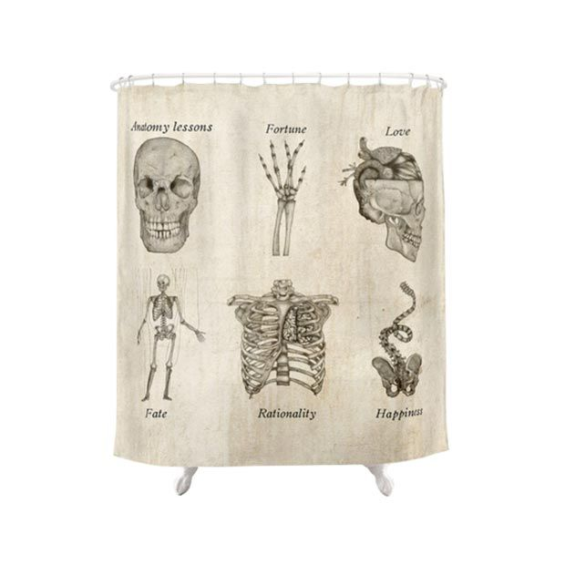 Lovely This Cool Shower Curtain Doubles As A Lesson In Anatomy And Metaphysics.  Its Vintage