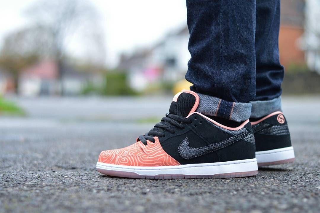 x Nike Dunk Low Pro SB \