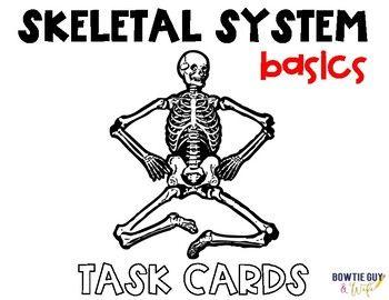 Skeletal System Task Cards (Basic Human Skeleton