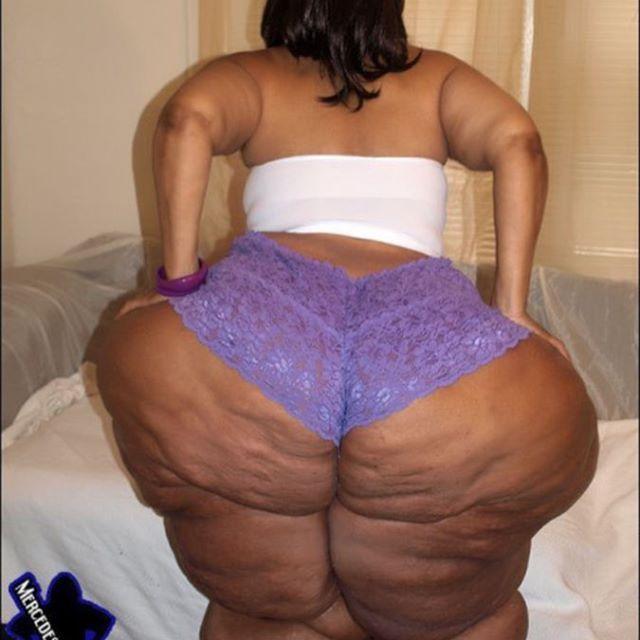 Ssbbw Bbw Massive Huge Largeandincharge Gigantic Sitonmyface Squashing Crushing Gorgeous Hips