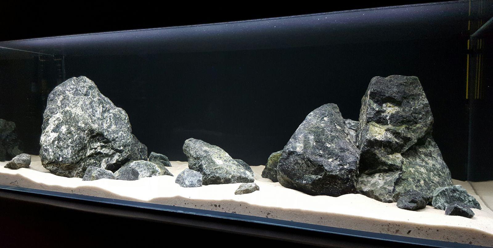 Moje 240l Akwaria Pinterest Biotope Aquarium Freshwater