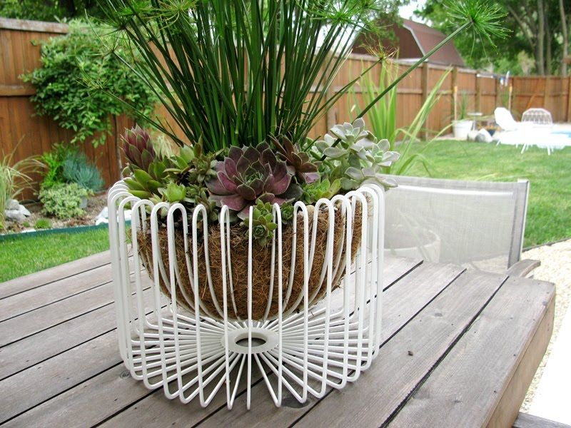 wire basket fruit bowl turned planter // IKEA Hackers