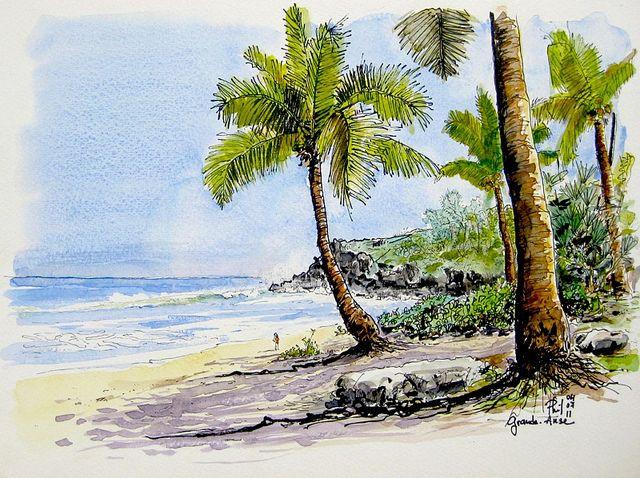 Grande Anse Beach Reunion Dessin Ile Peinture Paysage Et