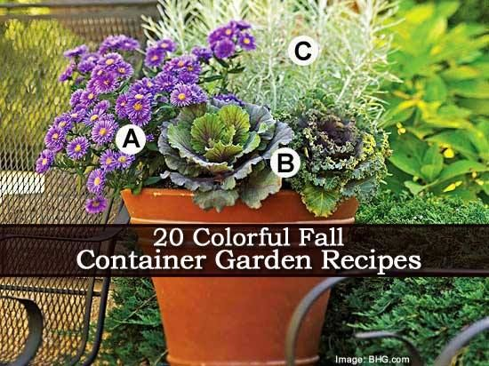 Plant Care Today  20 Colorful Fall Container Garden Recipes ====> http://plantcaretoday.com/fall-container-garden-recipes.html